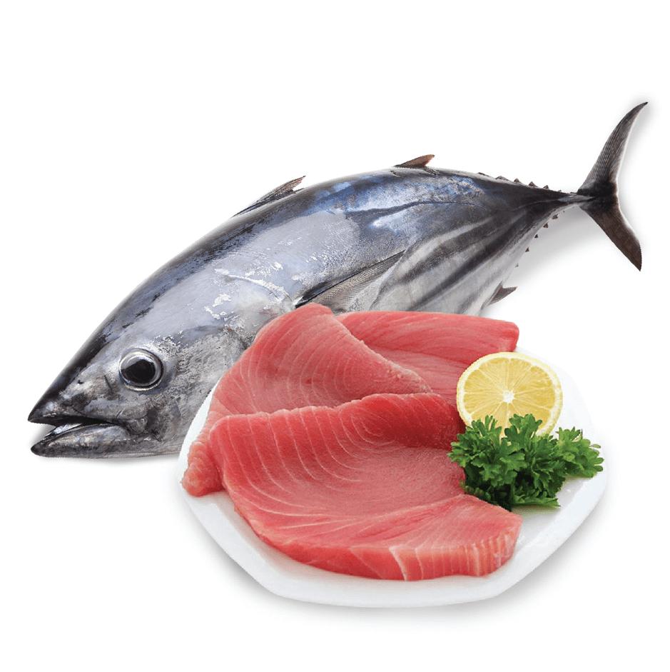 Tất tần tật bí quyết chọn cá ngừ tươi ngon cho cả nhà